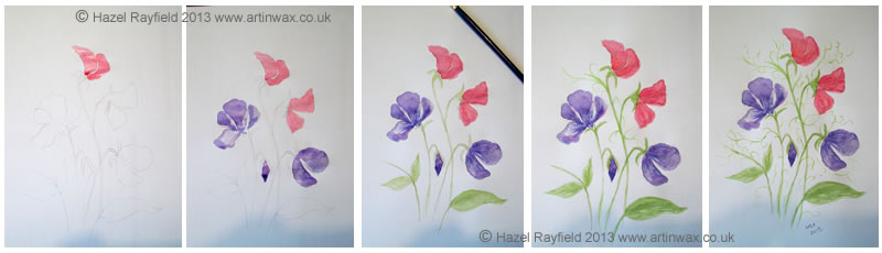 Sweet Peas Watercolour
